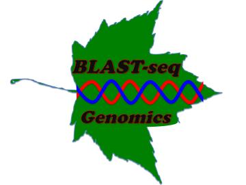 BLASTseq_Logo