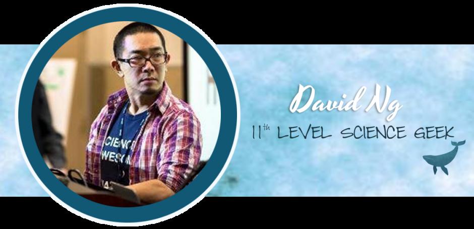 PK - DavidNg Profile